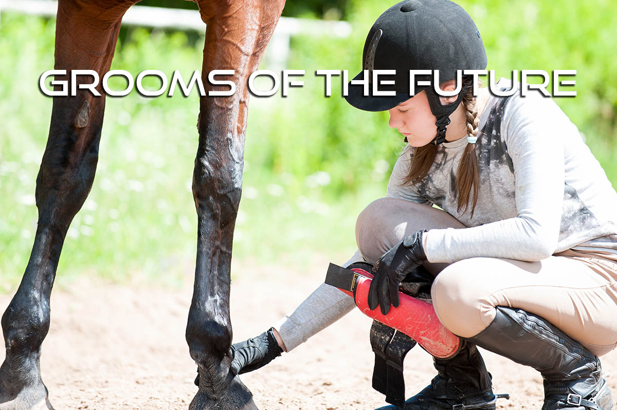 Employing an Apprentice Groom - Grooms of the Future