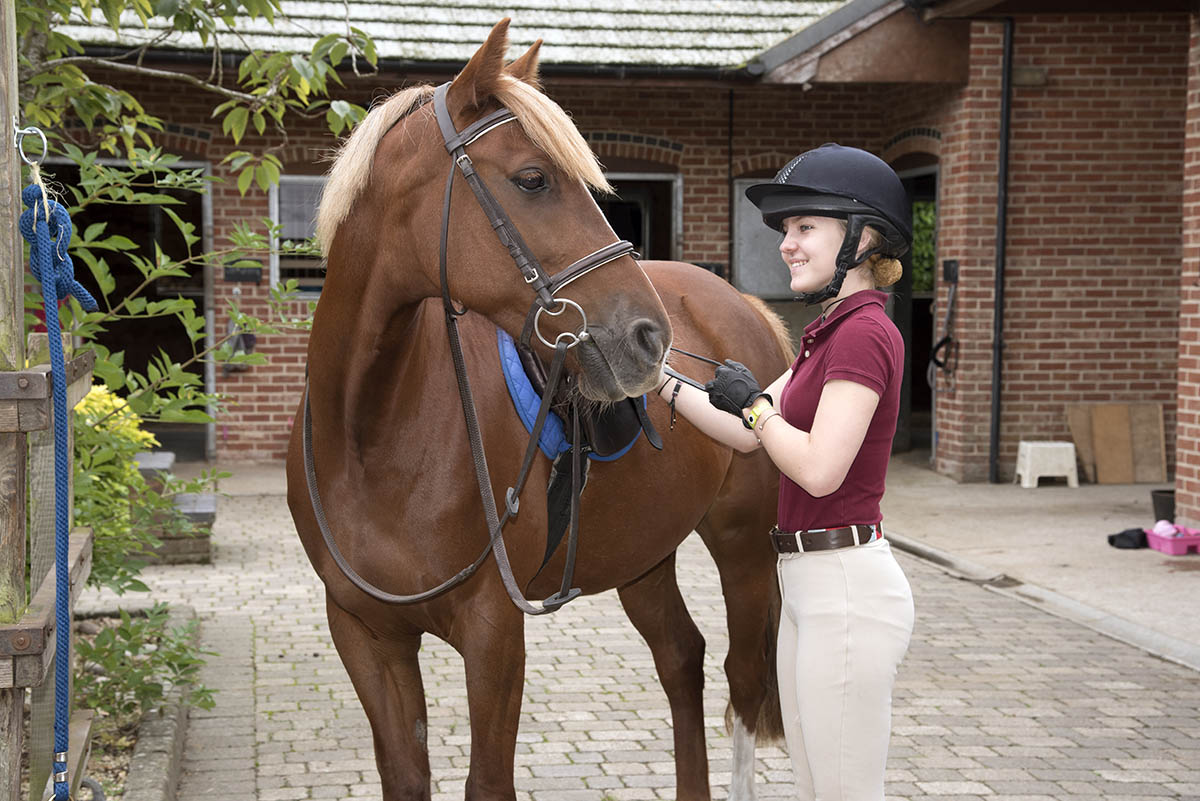 Equine Apprenticeships - Course Options - Grooms of the Future Part 2