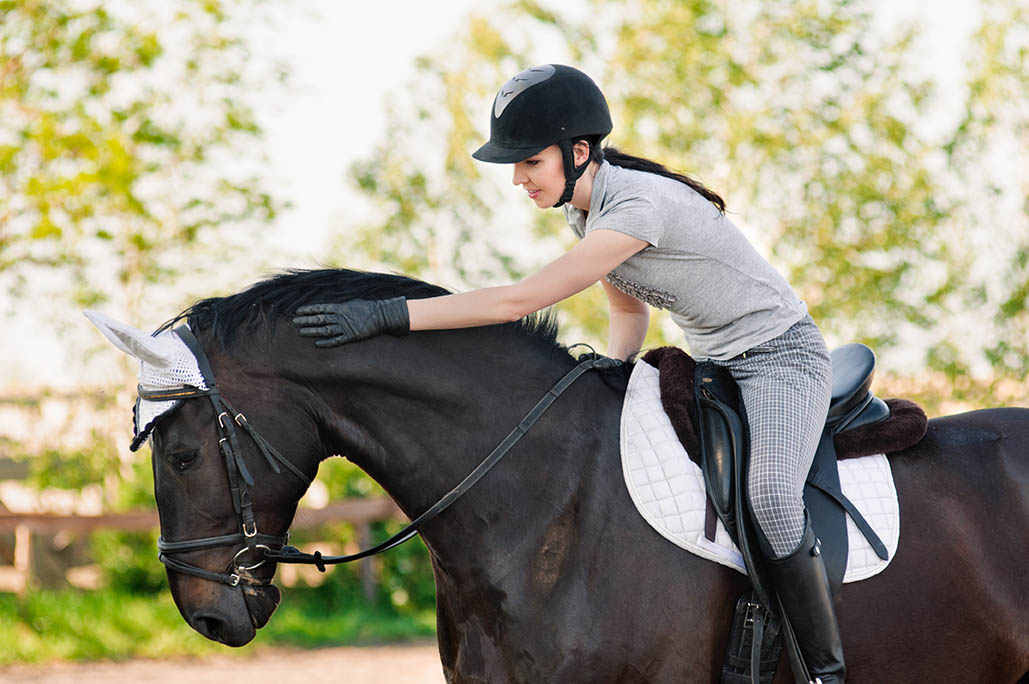 Become a Professional Rider - The Grooms List