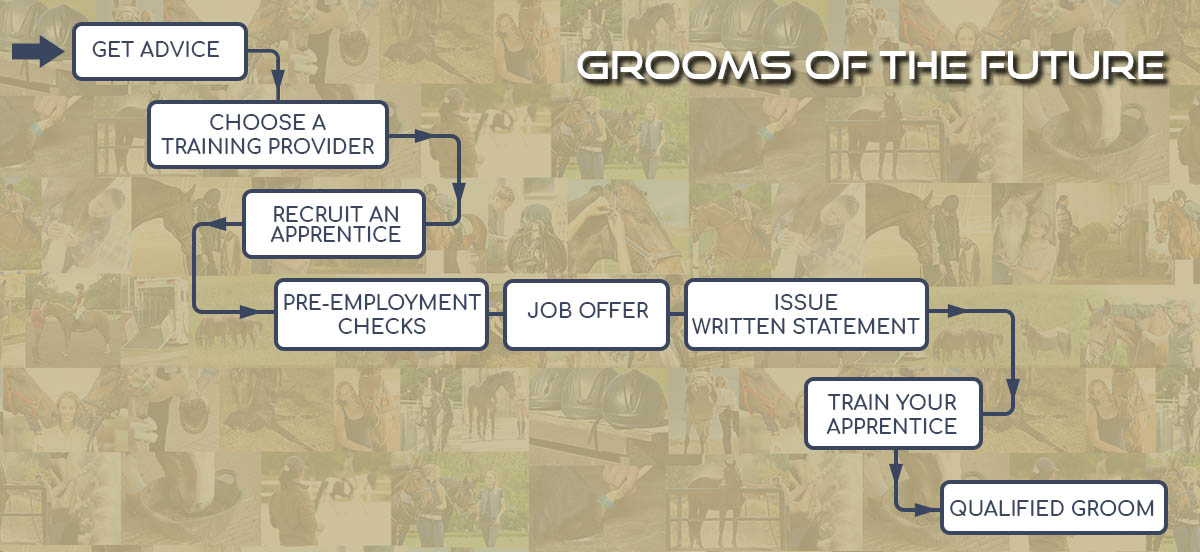 A Step By Step Guide To Employing An Apprentice Groom The Grooms List