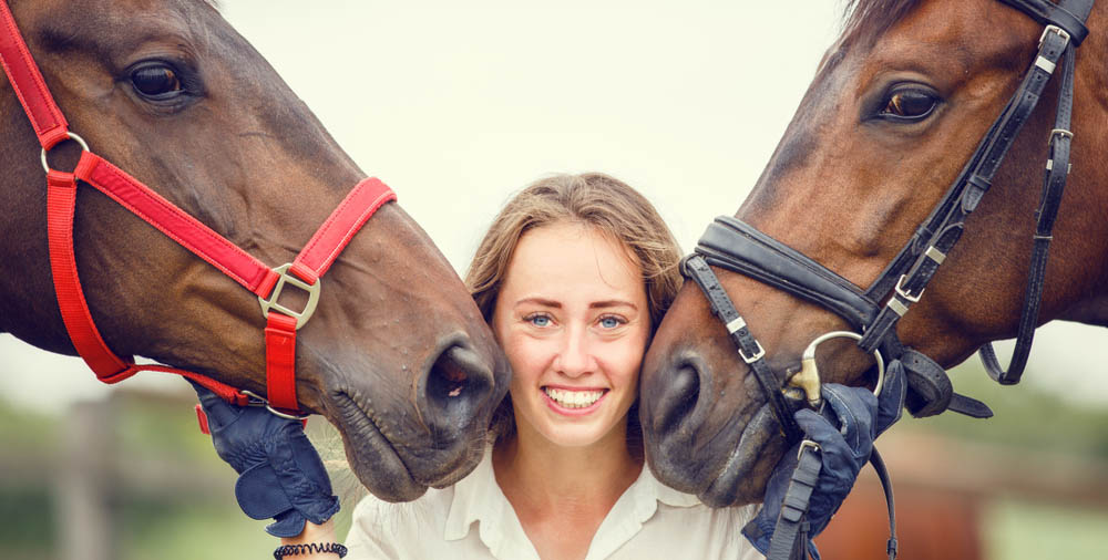 5 reasons why the equine industry needs Apprentice Grooms!