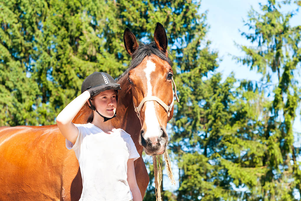 The Ultimate Equestrian Apprentice Startup Kit